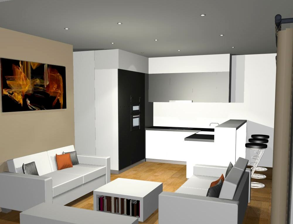 salon et cuisine spacieux appartement salon et cuisine dans la maison moderne banque duimages. Black Bedroom Furniture Sets. Home Design Ideas